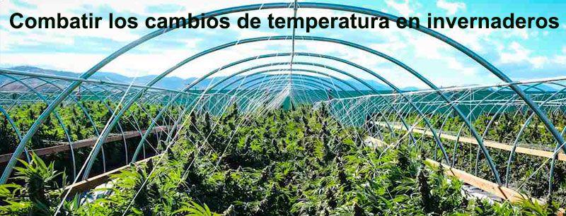 combatir los cambios de temperatura en invernaderos